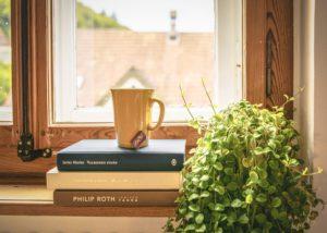 Bücher vor Fenster